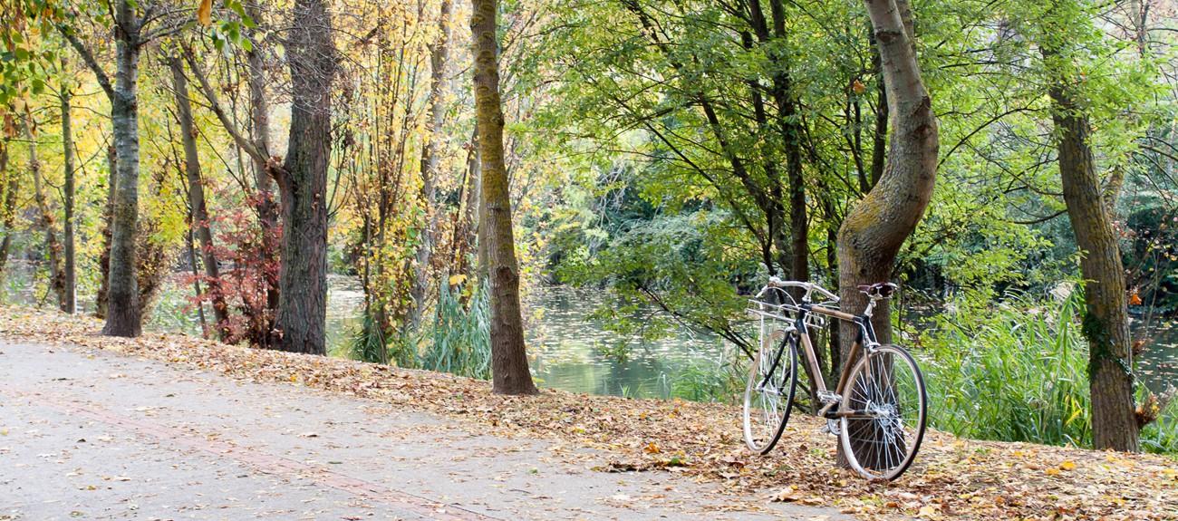 Bici de bambú Belarra de BambooKoa